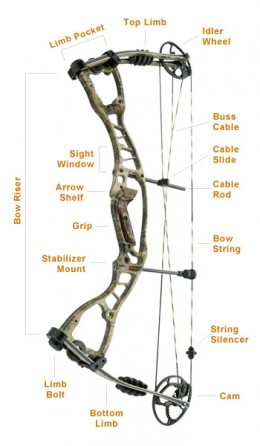 kinds of bows for archery