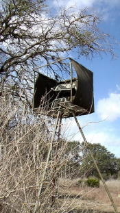 deer hunting treestands